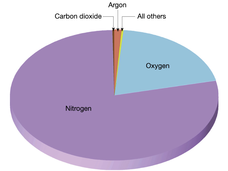 The Most Abundant Gas In The Atmosphere Is >> Biology 107 Home Page